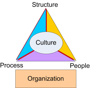 Organization_Triangle